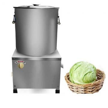 Vacuum Low Temperature Freeze Dryer for Food Instant Coffee Flower Sea Cucumber Fruit and Vegetable Powder