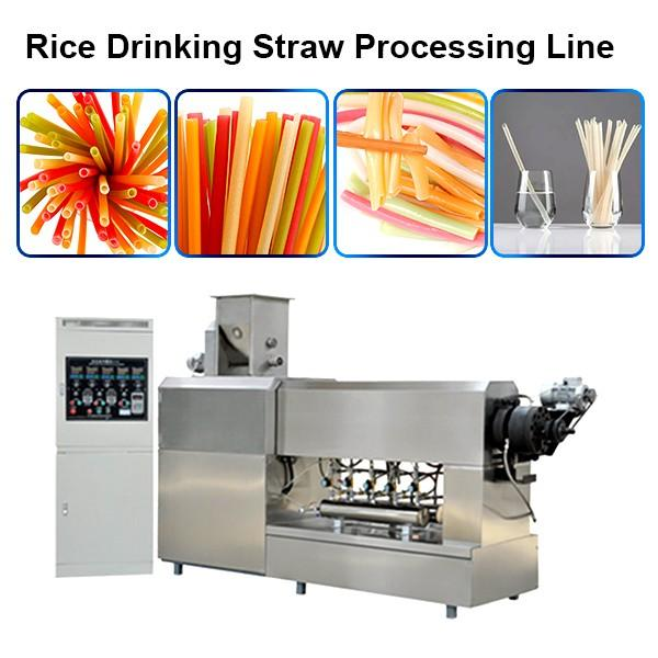100 150 Kg H Small Capacity Biodegradable Custom Rice Straw Whole Line Price #1 image