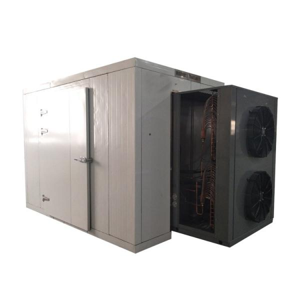 3m² Freeze Drying Pet Food Equipment for Fruit, Vegetable, Meat, Coffee #1 image