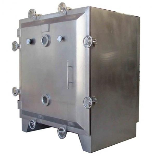 Fruit Vegetable Freeze Drying Equipment #1 image