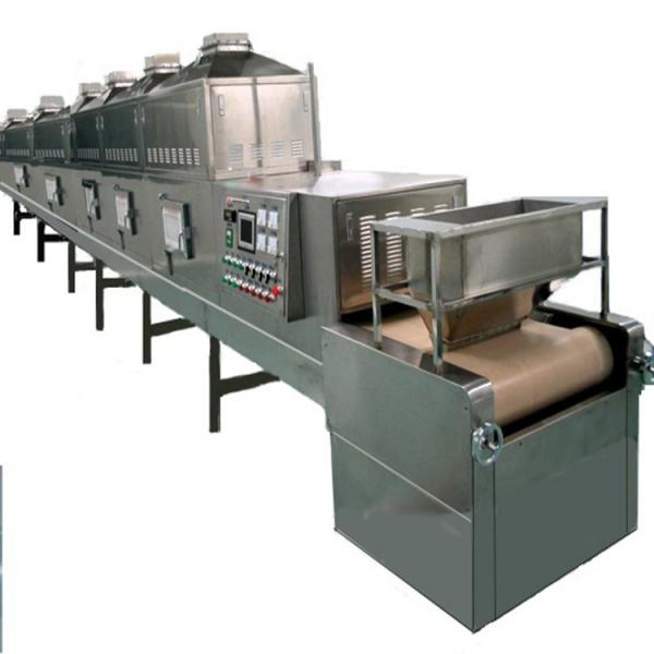 High Quality Ce Certificate Industrial Spice Conveyor Belt Microwave Dryer #2 image