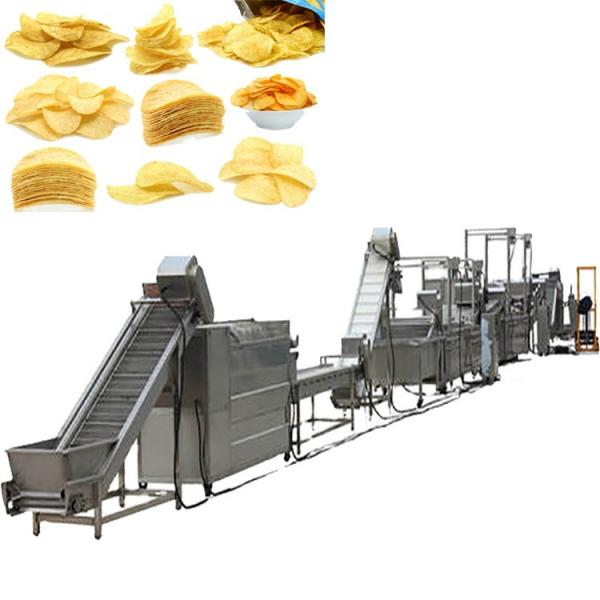 Pringle Chips Production Line (Pringles Chips making Machine) #1 image