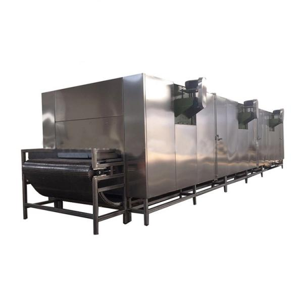 Turnkey Preserved Fruit and Vegetable Processing Line Candied Fruit Production Plant Dried Fruit and Vegetable Project Candied Preserved Fruit Processing Line #2 image